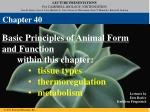 Basic Principles of Animal Form and Function within this chapter: tissue types thermoregulation metabolism