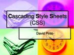 C ascading  S tyle  S heets (CSS)