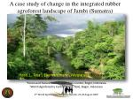 A case study of change in the integrated rubber agroforest landscape of Jambi (Sumatra)
