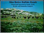Slim Buttes Buffalo Ranch Owned and operated by Sandy, Jacki, Brodie, and Samantha Limpert.