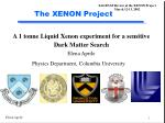 The XENON Project