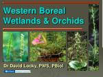 Western Boreal Wetlands & Orchids
