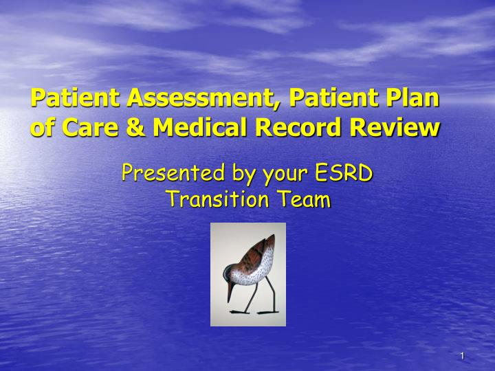 patient assessment patient plan of care medical record review n.