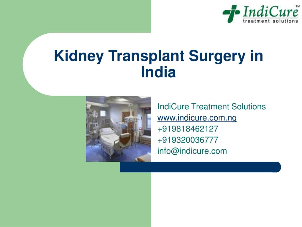 kidney transplant surgery in india l.