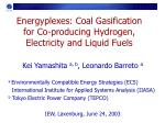 Energyplexes: Coal Gasification for Co-producing Hydrogen, Electricity and Liquid Fuels
