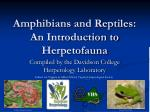 Amphibians and Reptiles: An Introduction to Herpetofauna