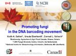 Promoting fungi  in the DNA barcoding movement