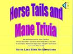 Horse Tails and Mane Trivia