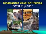 "Kindergarten Visual Art Training ""Wolf Pup 101 """