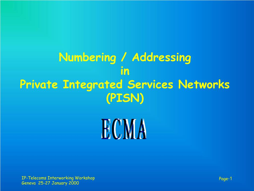 numbering addressing in private integrated services networks pisn l.