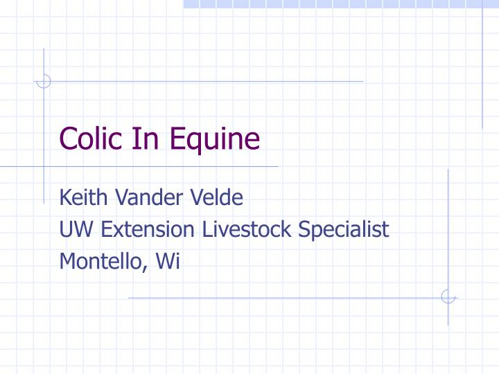 colic in equine n.
