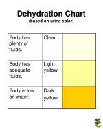 Dehydration Chart  (based on urine color)