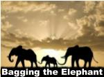 Bagging the Elephant