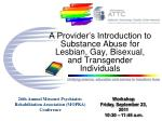 A Provider's Introduction to Substance Abuse for Lesbian, Gay, Bisexual, and Transgender Individuals