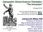 "Osteopathic Clinical Anatomy Orientation: ""The Immersion"""