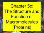 Chapter 5c: The Structure and Function of Macromolecules (Proteins)