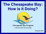 The Chesapeake Bay: How is it Doing?