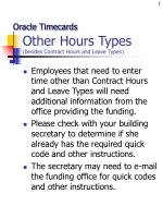 Other Hours Types (besides Contract Hours and Leave Types)