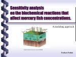 Sensitivity analysis on the biochemical reactions that affect mercury fish concentrations.