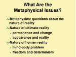 What Are the  Metaphysical Issues?