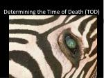 Determining the Time of Death (TOD)