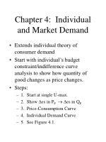 Chapter 4: Individual and Market Demand