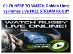 watch golden lions vs pumas live streaming rugby hqhd on pc