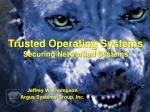 Trusted Operating Systems Securing Networked Systems