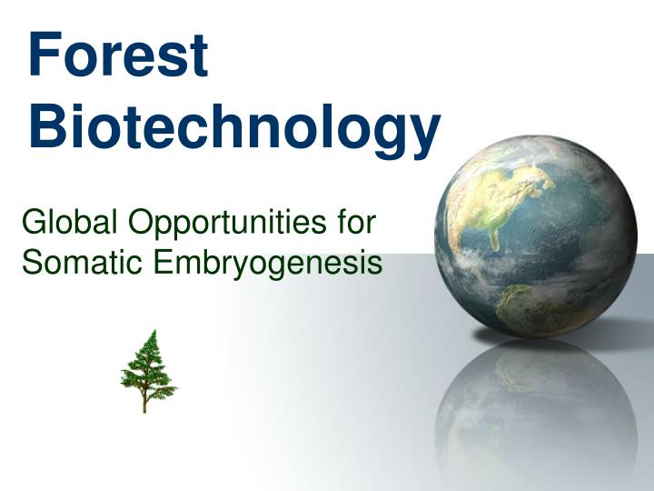 forest biotechnology n.