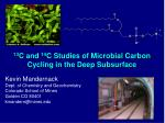 13 C and 14 C Studies of Microbial Carbon Cycling in the Deep Subsurface