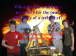 What are the conditions necessary for the peak efficiency of a trebuchet?