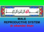 MALE  REPRODUCTIVE SYSTEM dr sikander khan