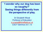 'I wonder why our dog has been so naughty?' Seeing things differently from the perspective of play. Dr Elizabeth Wood