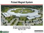 Pulsed Magnet System