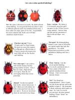 Are you a nine-spotted ladybug?