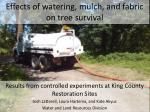 Effects of watering, mulch, and fabric on tree survival