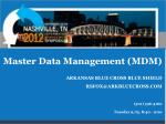 Master Data Management (MDM)