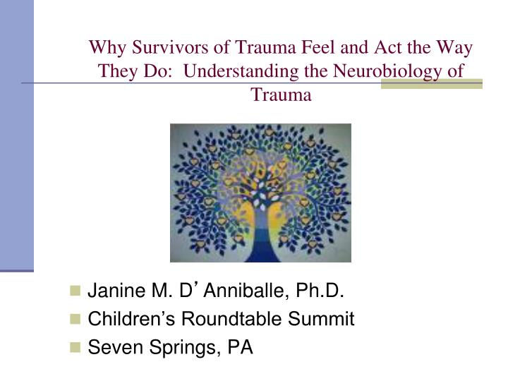 why survivors of trauma feel and act the way they do understanding the neurobiology of trauma n.