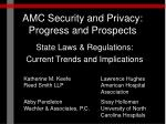AMC Security and Privacy: Progress and Prospects