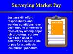 Surveying Market Pay