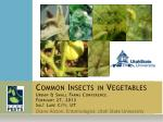 Common Insects in Vegetables Urban & Small Farms Conference February 27, 2013 Salt Lake City, UT