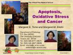 Apoptosis, Oxidative Stress and Cancer