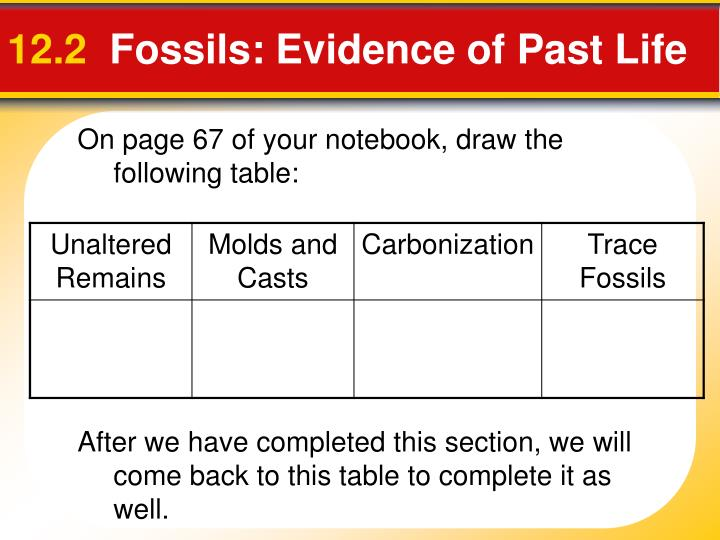 12 2 fossils evidence of past life n.