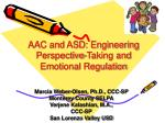 AAC and ASD: Engineering Perspective-Taking and Emotional Regulation