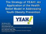 The Strategy of YEAH!: An Application of the Health Belief Model in Addressing Youth Obesity Prevention