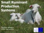 Small Ruminant Production Systems Stephan Wildeus Virginia State University