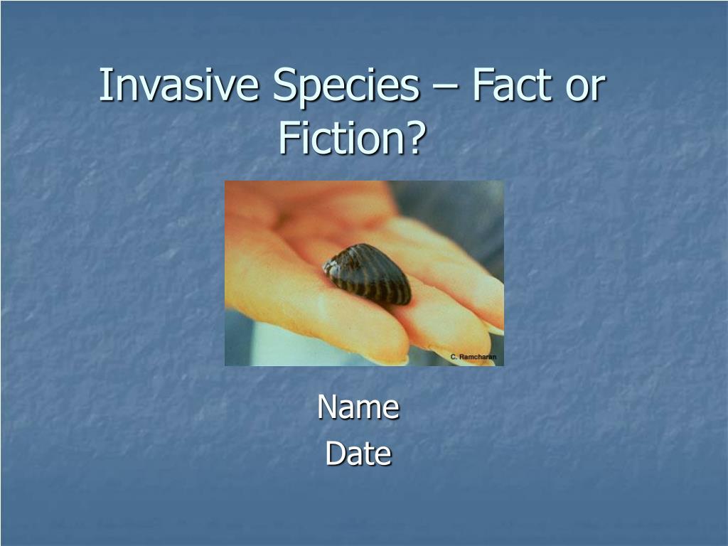 invasive species fact or fiction l.