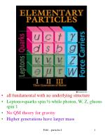 all fundamental with no underlying structure Leptons+quarks spin ½ while photon, W, Z, gluons spin 1 No QM theory for gr