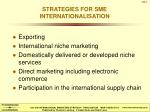 STRATEGIES FOR SME INTERNATIONALISATION