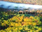 Forestry as a Career?